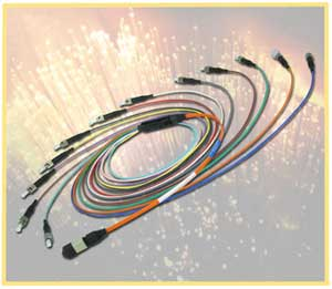 MTP Fiber Optic Fanout Cable